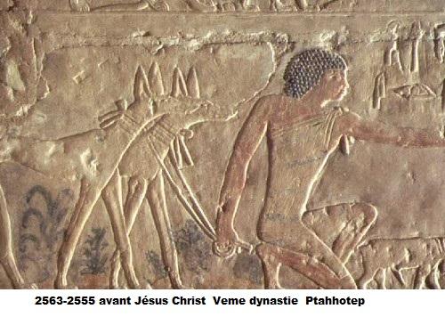 0 2563 a 2555 avant jesus christ ptahhotep 1