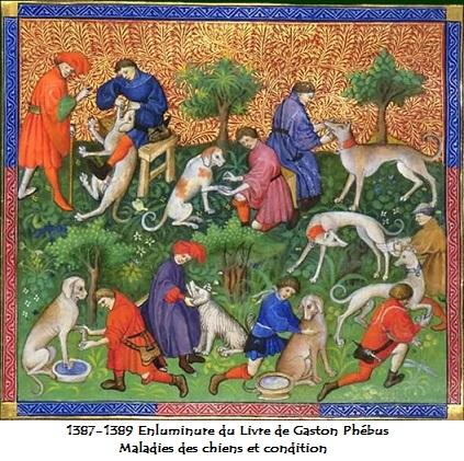 1387 1389 enluminures du livre de gaston phebus maladies des chiens et leur conditions 1