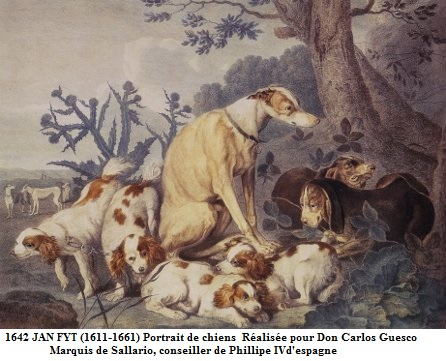 1642 jan fyt 1611 1661 portrait de chiens