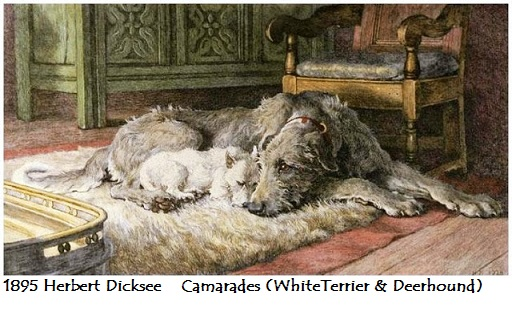 1895 herbert dicksee camarades whiteterrier deerhound