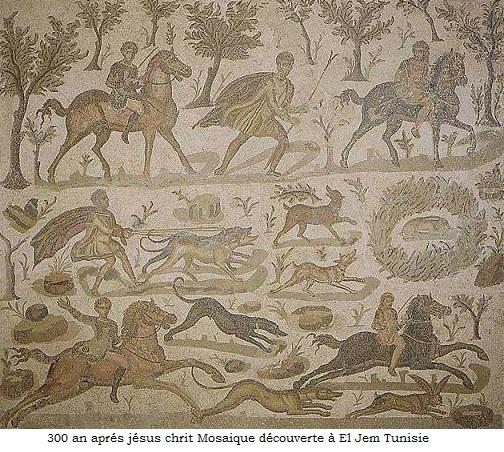 300 mosaique decouverte a el jem tunisie chasse course levrier 1